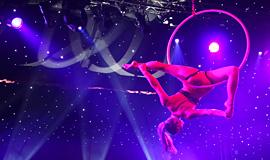 Aerial Hoop, Live Show