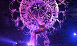 Champagne Crystal Girl Hanging, Corporate Event