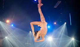 Aerial Silks Duet, Live Show